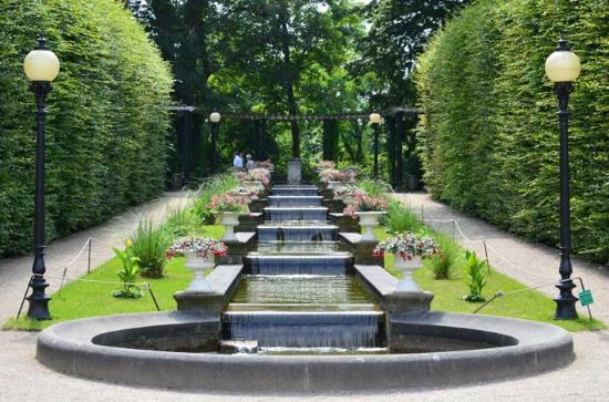 botanical-gardens-flora (1)