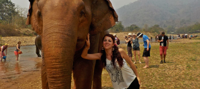 Elephant Nature Park – Chiang Mai